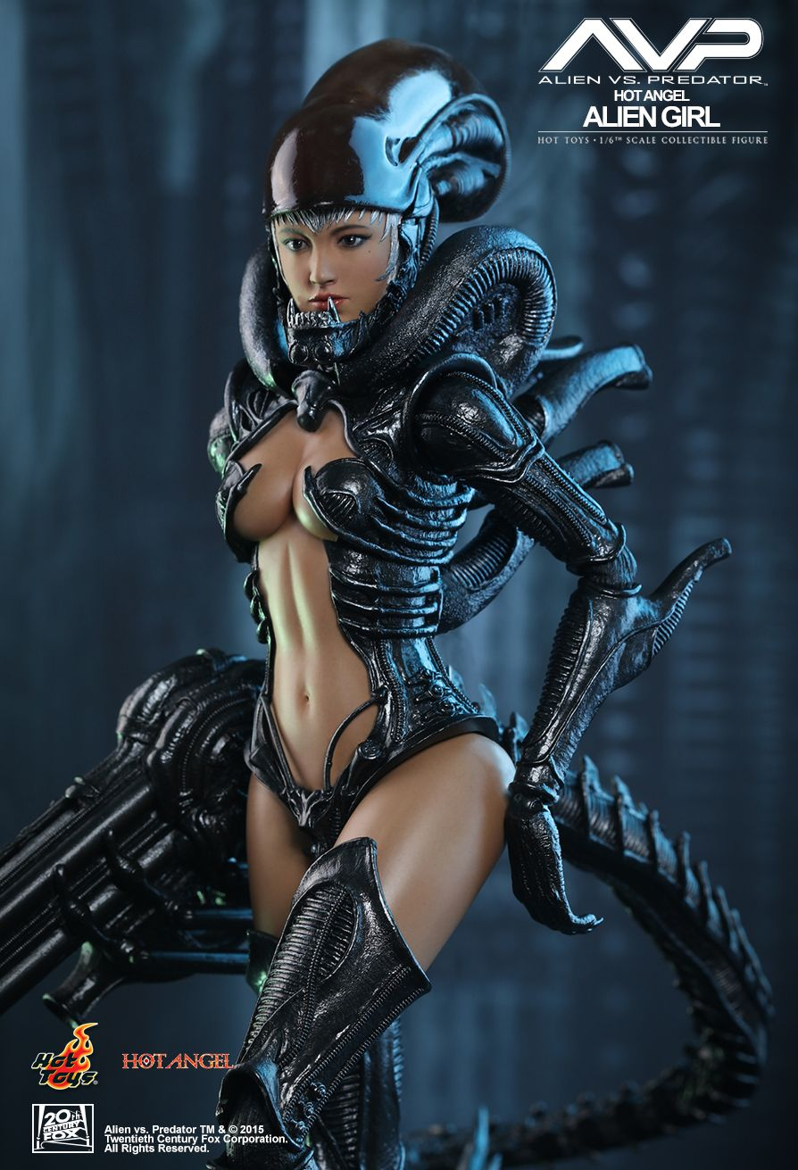 hot toys   avp  6th scale collectible figure