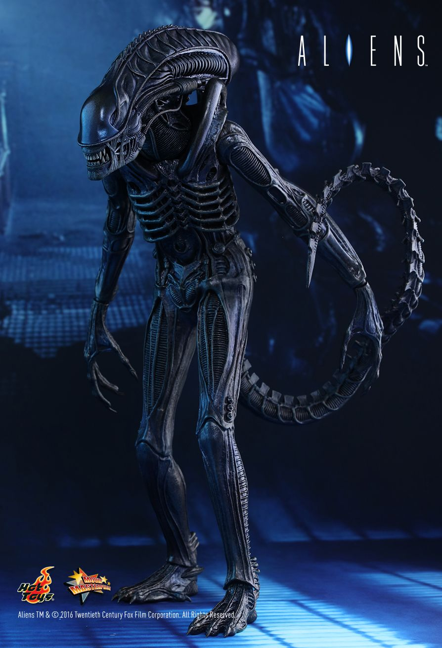 Hot toys aliens alien warrior 16th scale collectible figure thecheapjerseys Choice Image