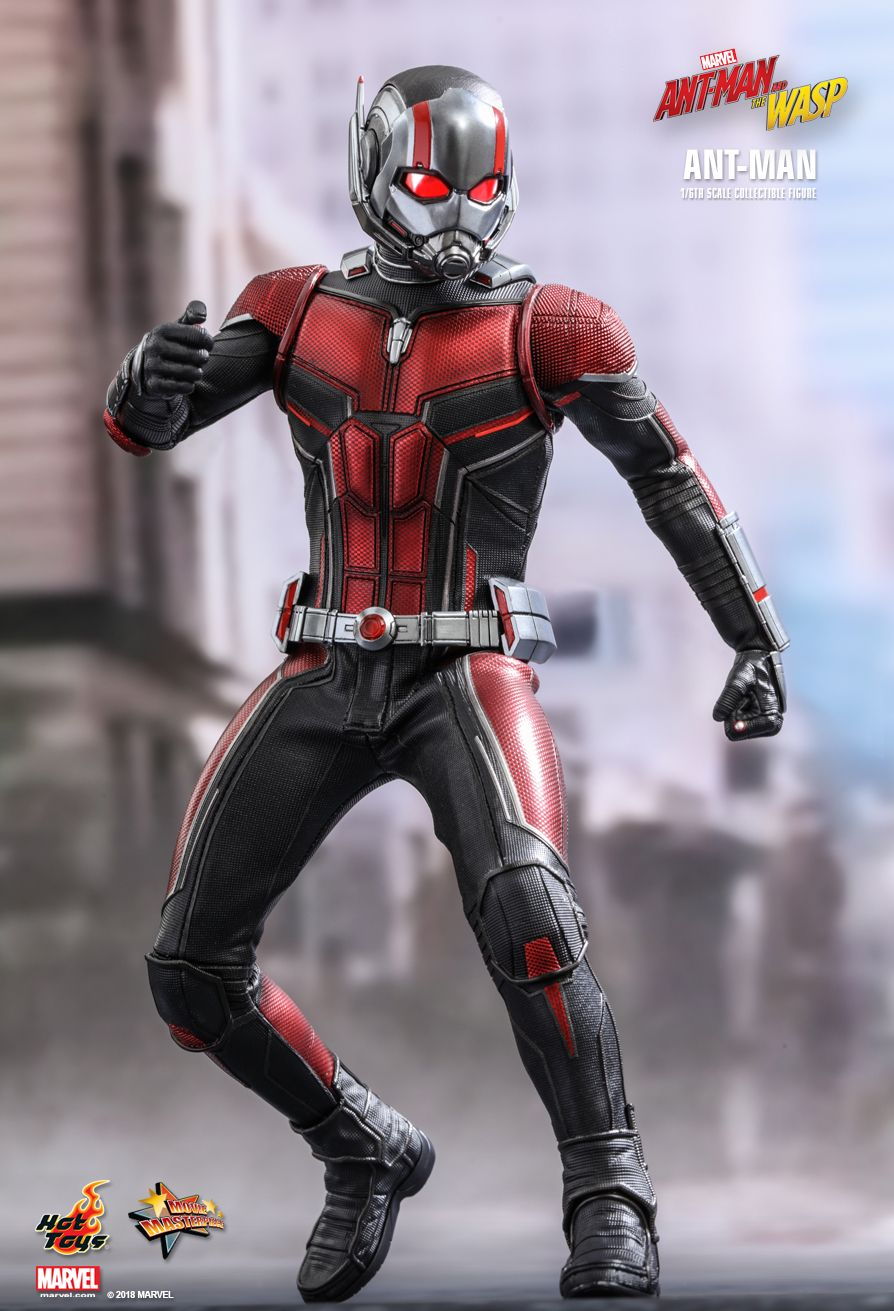 This is an image of Ridiculous Pics of Antman