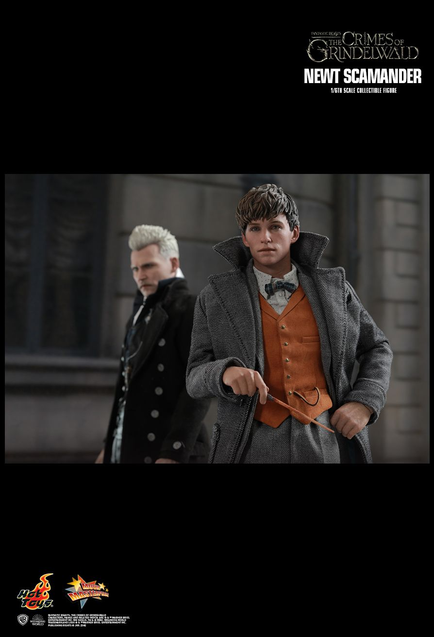 Hot Toys : Fantastic Beasts: The Crimes of Grindelwald - Newt Scamander 1/6th scale Collectible Figure